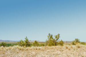 cottonwood land for sale